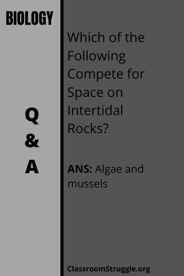 Which of the Following Compete for Space on Intertidal Rocks?