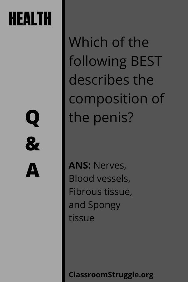 Which of the following BEST describes the composition of the penis